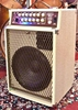 Afbeeldingen van SWR Blonde Workingman's Combo amplifier, sn 0782.